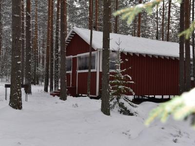 Финский дом сауной